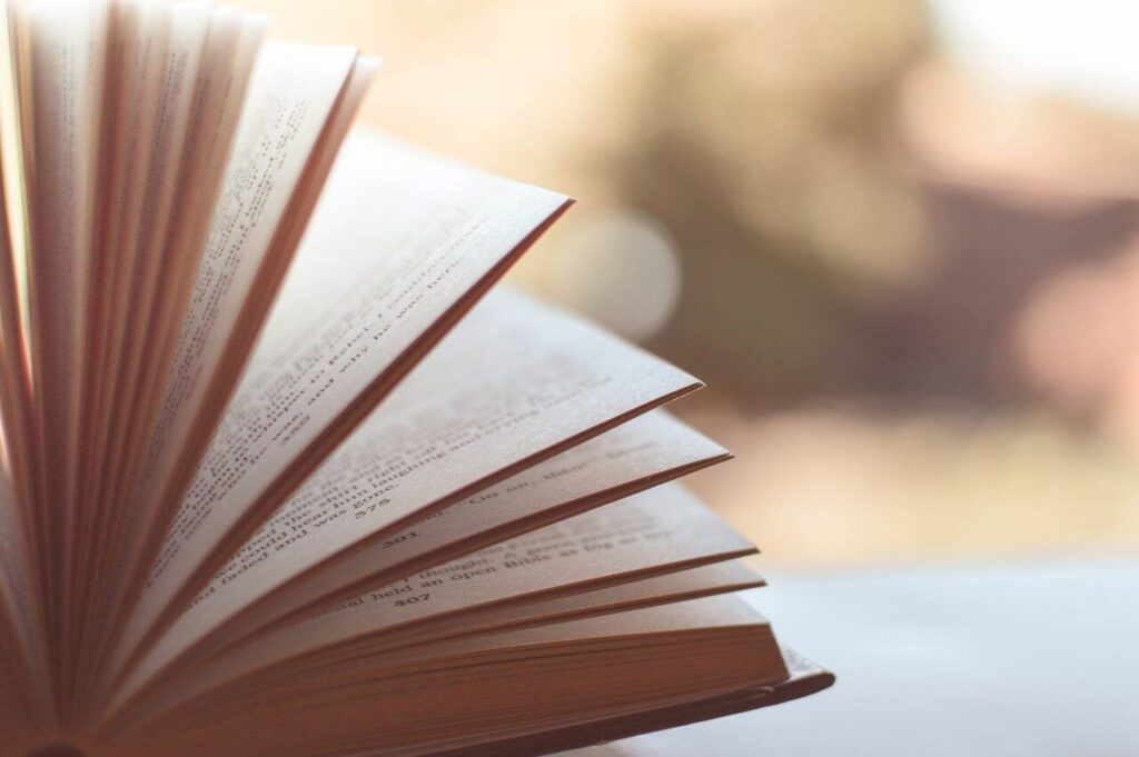 溢れるほど本を読む