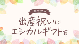 出産祝い×エシカルギフトならHaruulala!オーガニックコットン×ジェンダーフリーなベビー服ブランド