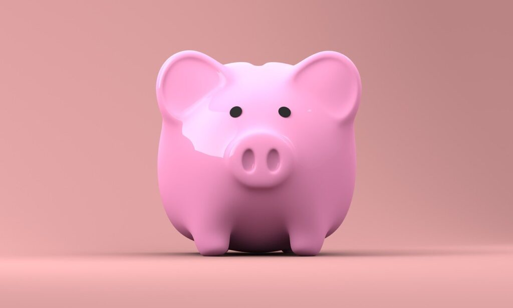 ボーナスには1円も手をつけずに全額貯金
